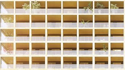 09 zoom façade